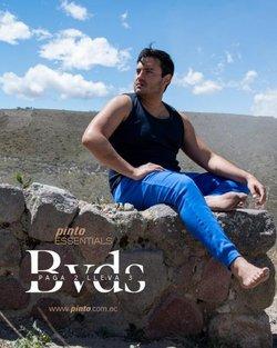Catálogo Pinto ( 2 días publicado)