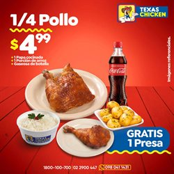 Ofertas de Restaurantes en el catálogo de Texas Chicken en Piñas Ecuador ( 2 días más )