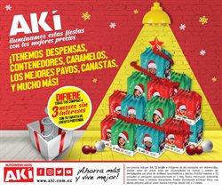 Catálogo Akí ( Más de un mes )