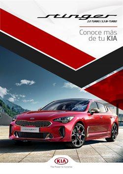 Ofertas de Carros, Motos y Repuestos en el catálogo de Kia en Guayaquil ( 29 días más )