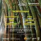 Catálogo Banecuador en Machala ( Más de un mes )