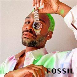 Catálogo Fossil ( Más de un mes )