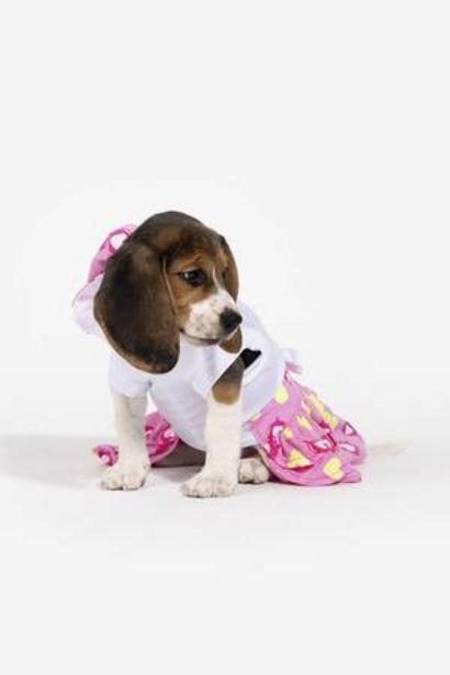 Oferta de Vestido Minnie Mouse de Corazones Be Pets Razas Pequeñas y Medianas  por 12,99€